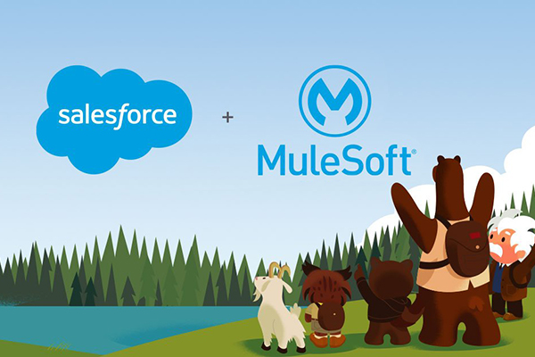 MuleSoft and Salesforce Q&A: Integration and Data