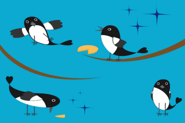 We're Marketers Not Magpies: Why Marketers Shouldn't Jump At The Latest Shiny Thing