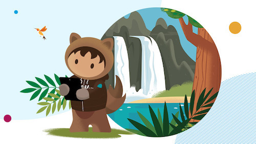 Salesforce Trailblazers Share Digital Transformation Strategies