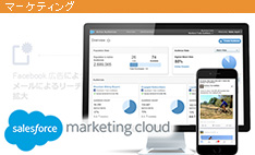 Salesforce Marketing Cloud Active Audiences が登場