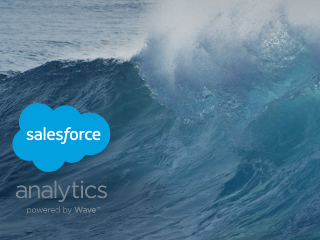 Wave: Analytics for the Rest of Us