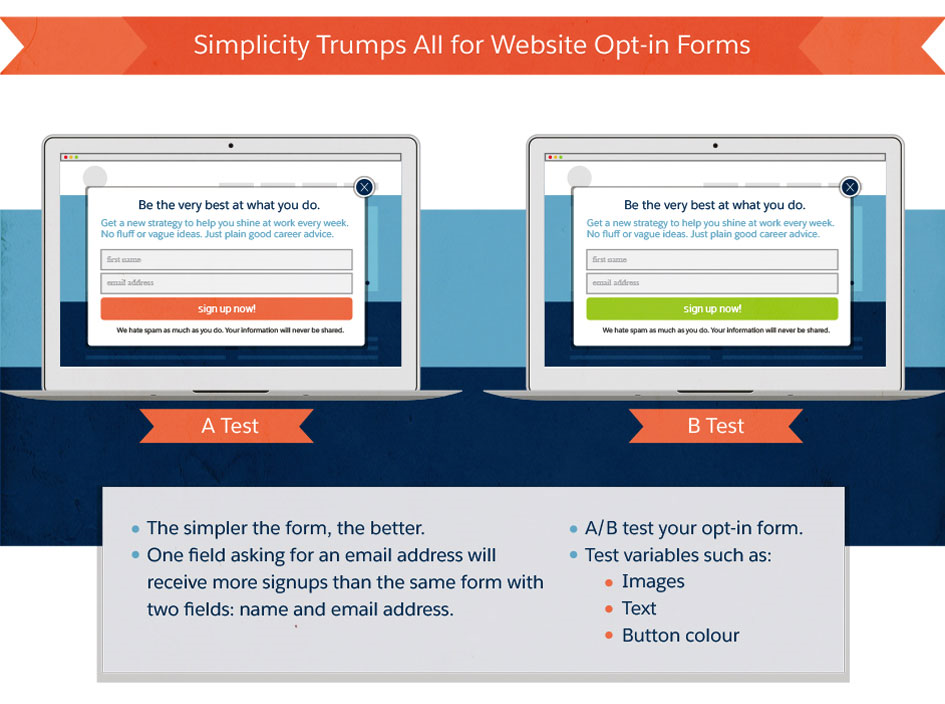 Simplicity Trumps All for Website Opt-in Forms