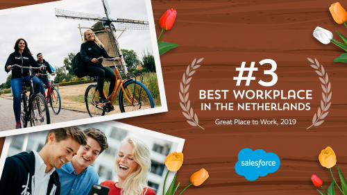 Salesforce Nederland in top 3 van Great Place to Work: wat maakt Salesforce zo'n goede werkplek?