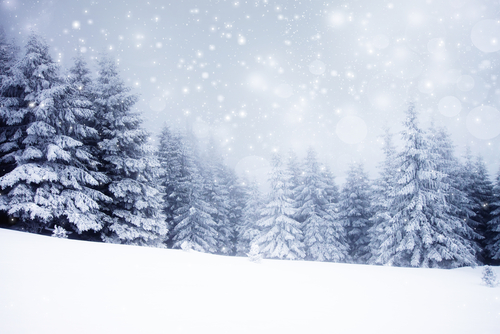 Salesforce Winter '16 Sandbox Preview Instructions
