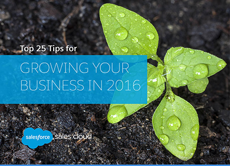 New E-book: Our Top 25 Tips for Growing Your Business in 2016