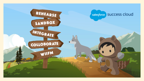 5 Pro Tips for Salesforce Developers