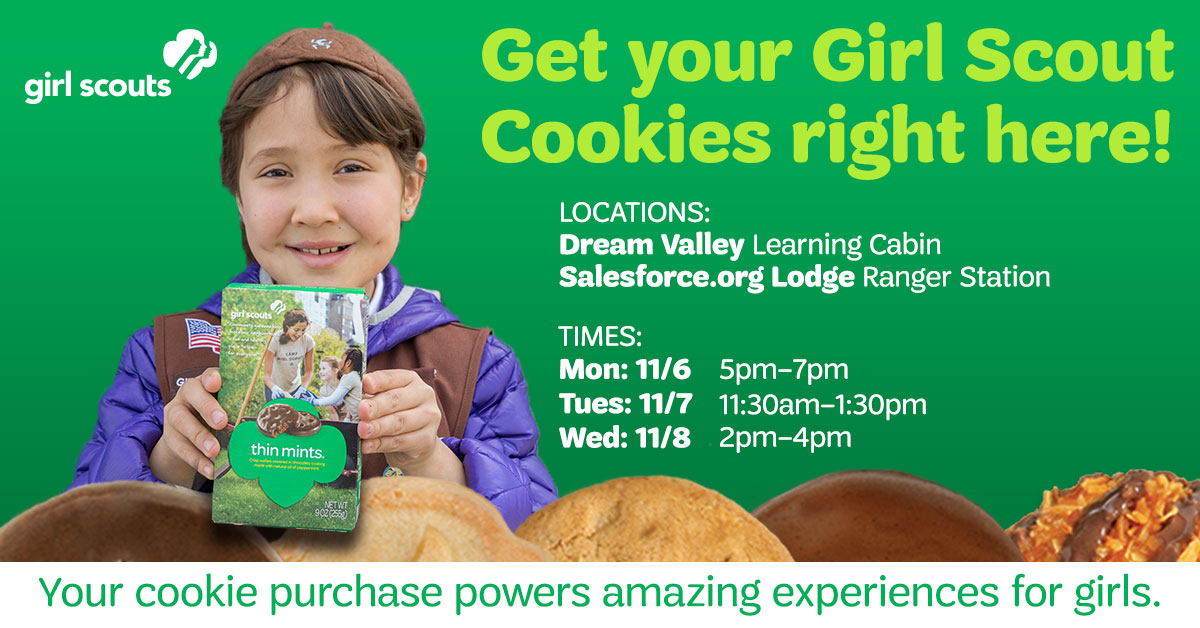 learn how girl scouts is building the stem trailblazers of