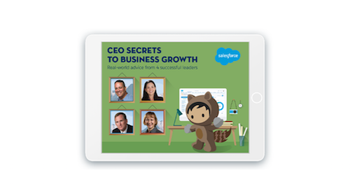 4 Successful CEOs Share Their Secrets to Business Growth: Download Now