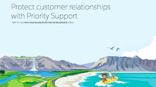 Protect Customer Relationships with Priority Support: A New Salesforce E-book