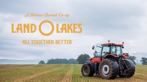 Measuring Brand Transformation With Land O'Lakes