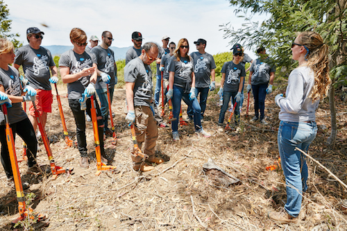 How Salesforce.org Achieves Measurable Social Impact
