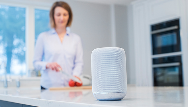 Listen Up: Voice Search to Reach a Tipping Point This Holiday