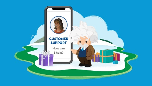 Einstein with customer support