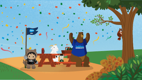 2020 Salesforce MVPs