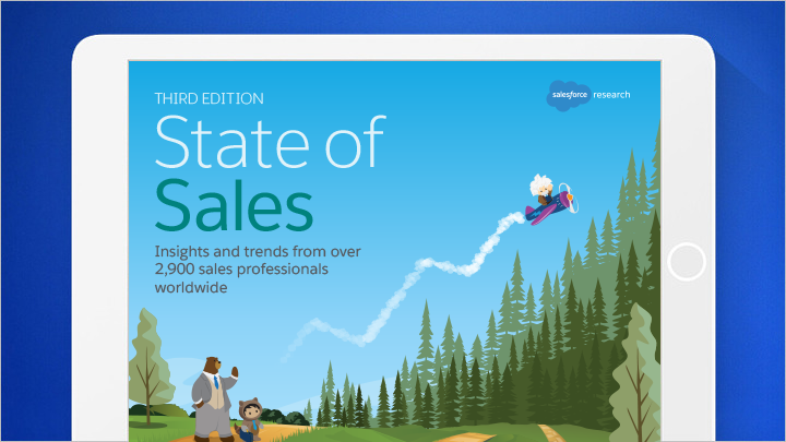 crm guide by sales cloud