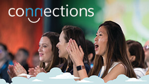 Salesforce Connections audience