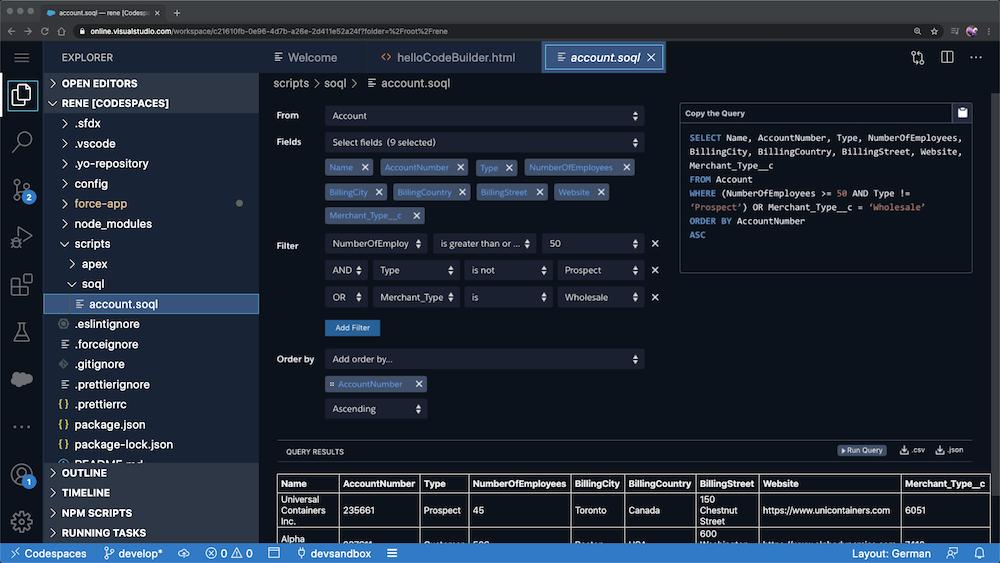 Explorer > Open Editors > RENE [CODESPACES] > Account.soql