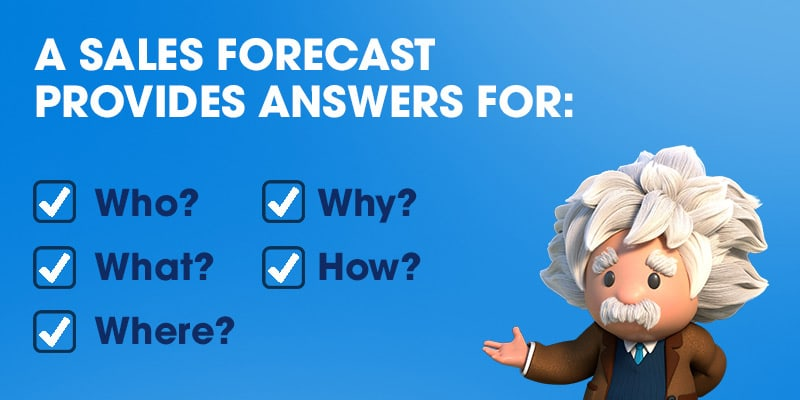 A Sales Forecast Provides Answers For:  Who? Why? What? How? Where?